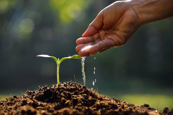 Agro-Ecologia